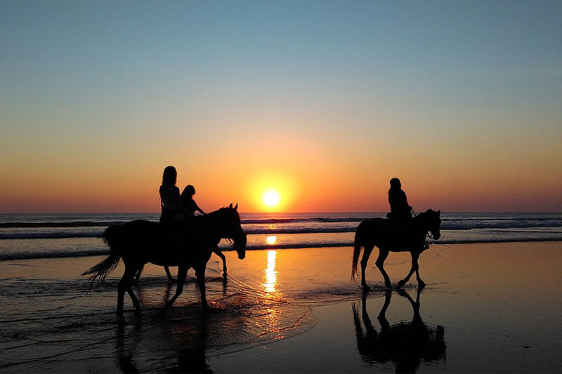 Group riding on horses at the beach